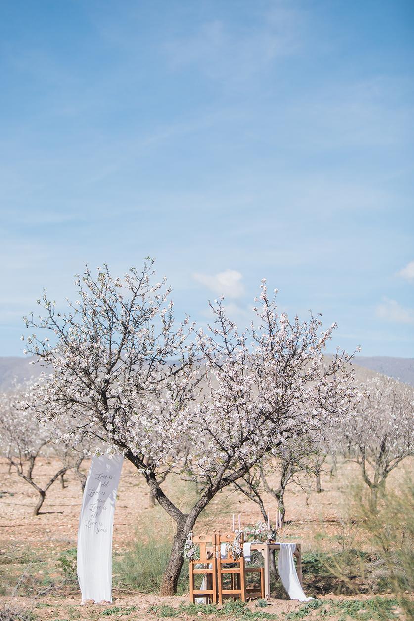 Hochzeit in Andalusien, Dekoration