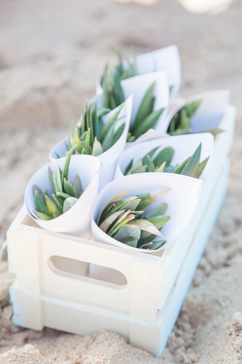 Freie Trauung Streublumen Olivenbaumblätter