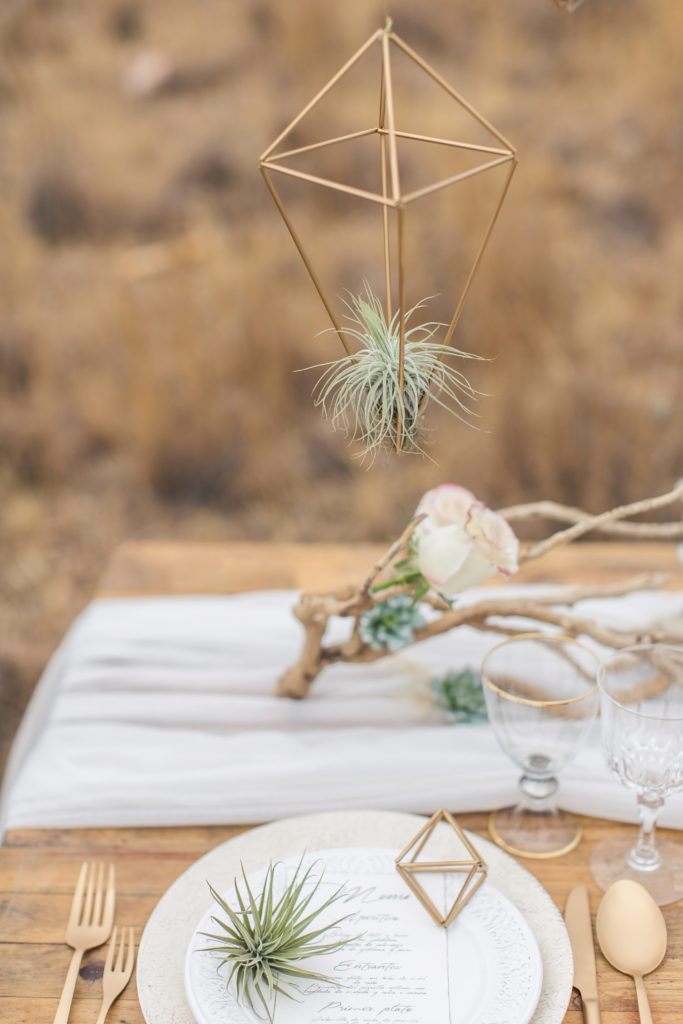 Desert Wedding