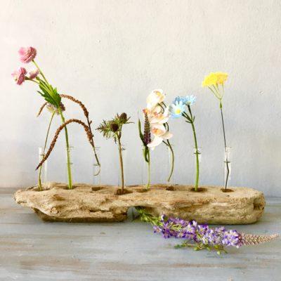 Treibholz-Blumenvase