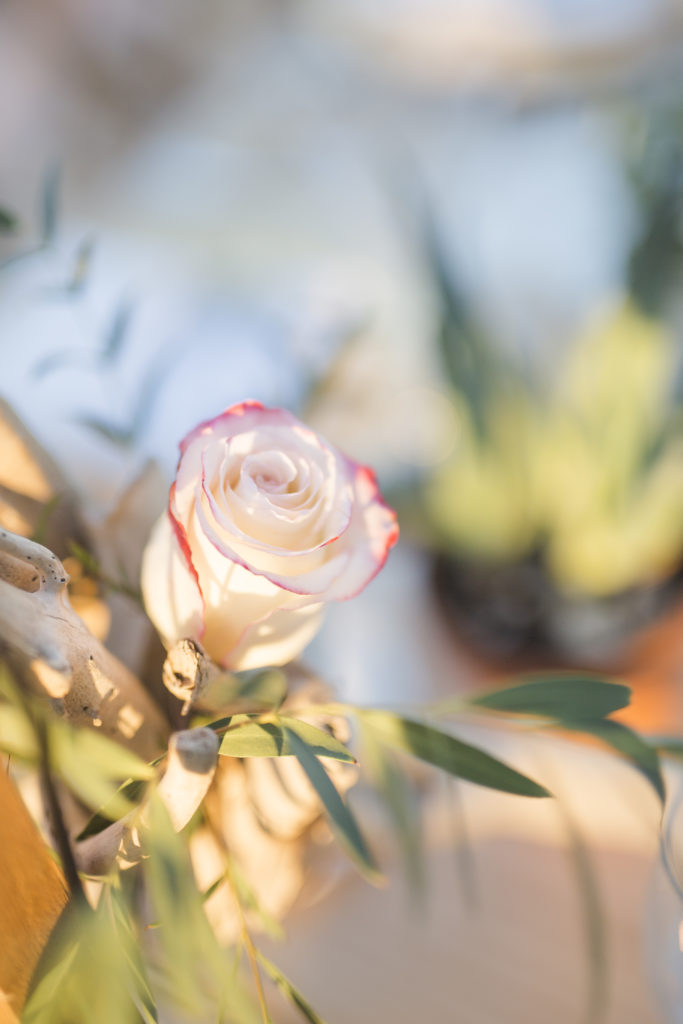 Schlichte Mediterranische Hochzeit (51)